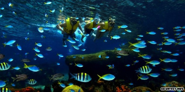 Singapore to open world's largest oceanarium